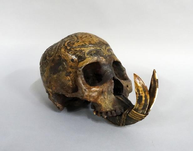 Crâne Dayak de Bornéo. Il est sculpté en partie haute et arrière,