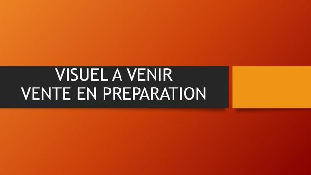 Renault Mégane  - Date de première immatriculation  : 05.01.2011