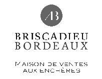 logo Maître Antoine BRISCADIEU et BRISCADIEU BORDEAUX SAS