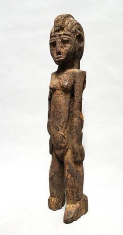 LOBI - Exceptionnelle représentation d'un Buthib. Par sa force, son