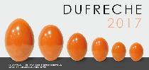 logo DUFRECHE et HDV des CHAPRAIS sas