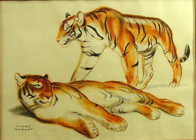 André MARGAT   ''Tigres''   Dessin signé en bas à gauche